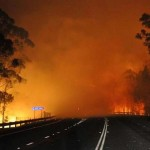 Bush fires are a serious threat to tourism